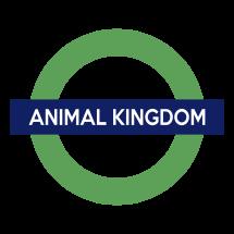 Animal King