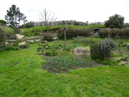 Hobbiton Movie Set Tour